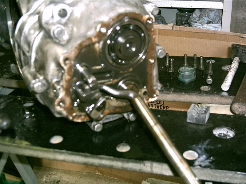bv23-medium--18f4661.jpg