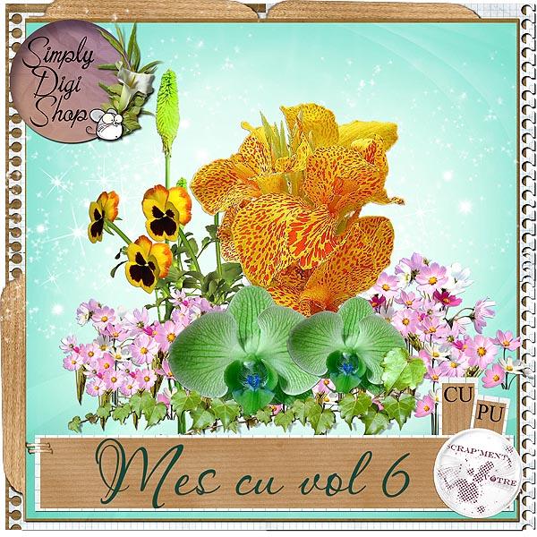 http://img21.xooimage.com/files/3/2/1/fleurs-1af4b04.jpg